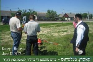 פעילי ארגון אבותינו בעבודות שטח