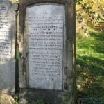 ר' יוסף שלמה רייניטץ